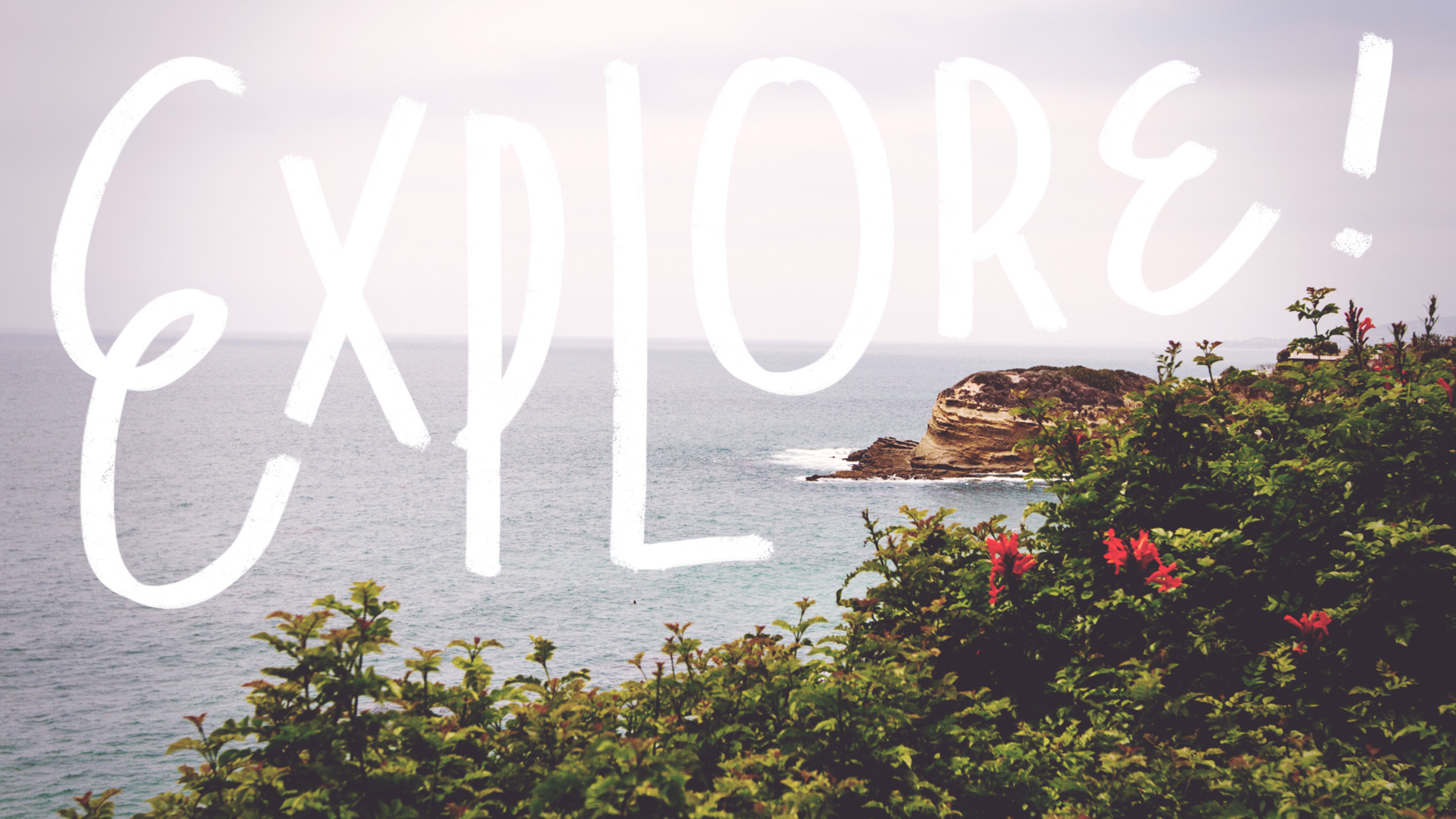 Explore wallpaper